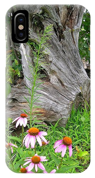 Echinacea Stumpage IPhone Case