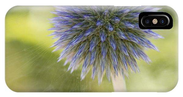 Echinops Blue IPhone Case