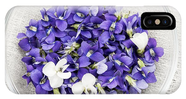 Wild Violet iPhone Case - Edible Violets  by Elena Elisseeva
