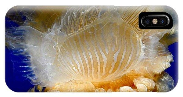 Egg Yolk Jelly IPhone Case