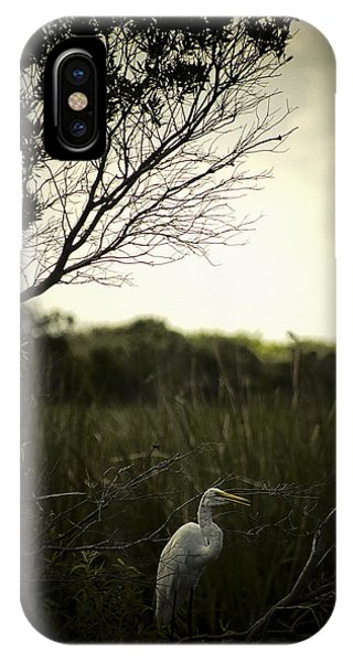 Egret At Sunset IPhone Case