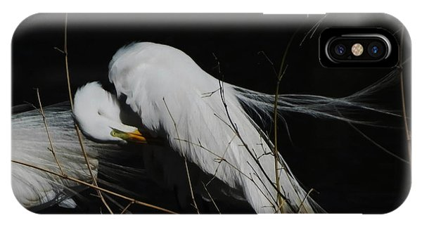 Egret Bird City At Avery Island Louisiana IPhone Case