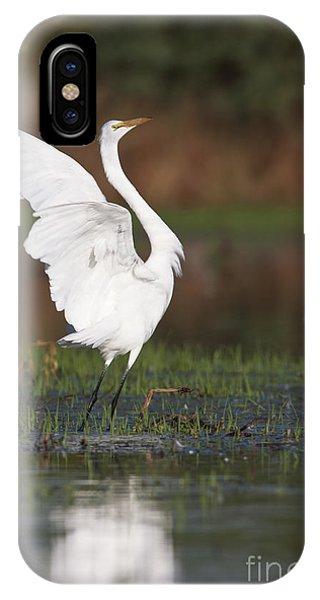 Egret Dancing IPhone Case