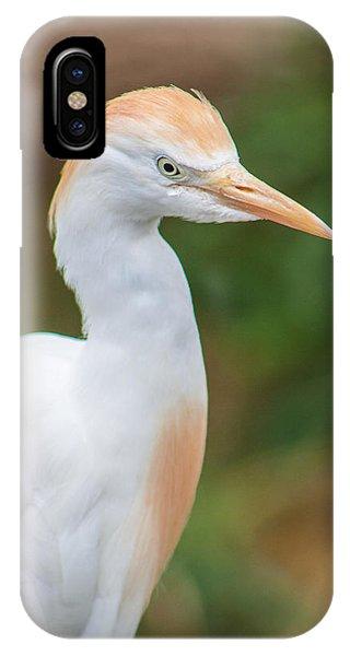 Egret From Madagascar IPhone Case