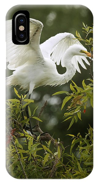 Egret Launch IPhone Case