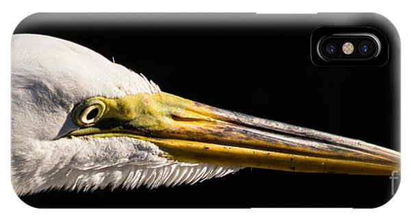 Egret Portrait IPhone Case