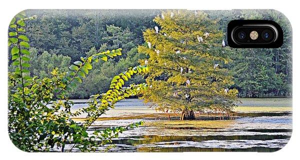 Egret Tree IPhone Case