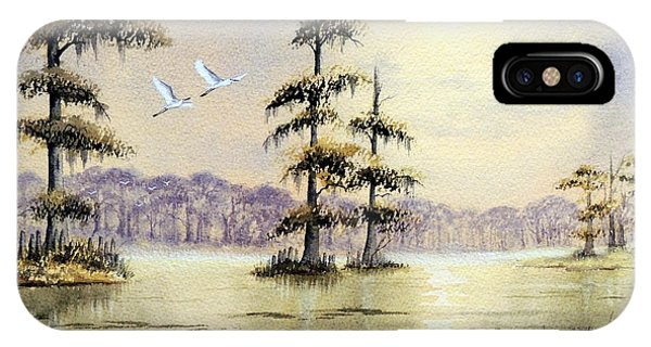 Wakulla iPhone Case - Egrets Over Wakulla Springs by Bill Holkham