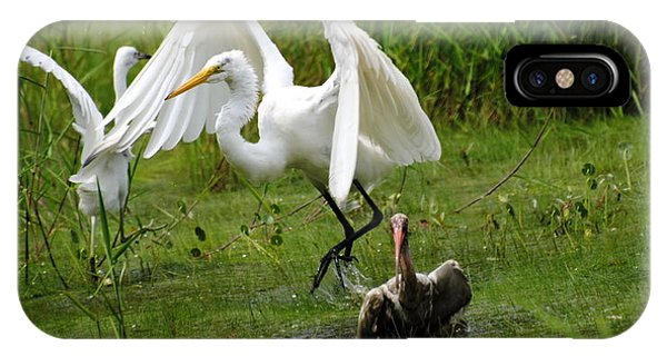 Egrets Taking Flight IPhone Case