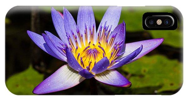 Egyptian Lotus Flower Iphone Cases Fine Art America