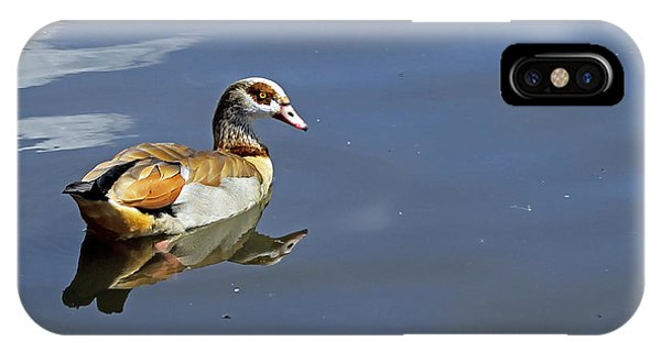 Egyptian Goose IPhone Case