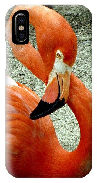Figure Eight Flamingo IPhone Case