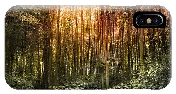 El Paradiso Mio - Awakening Spiritual Landscape IPhone Case