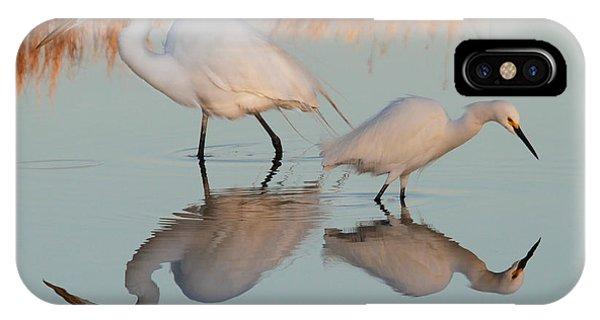 Elegant Big And Small Great White And Snowy Egrets IPhone Case