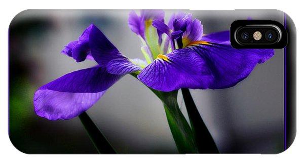 Elegant Iris With Black Border IPhone Case