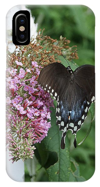 Elegant Swallowtail Butterfly IPhone Case