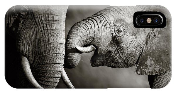 Animals iPhone Case - Elephant Affection by Johan Swanepoel