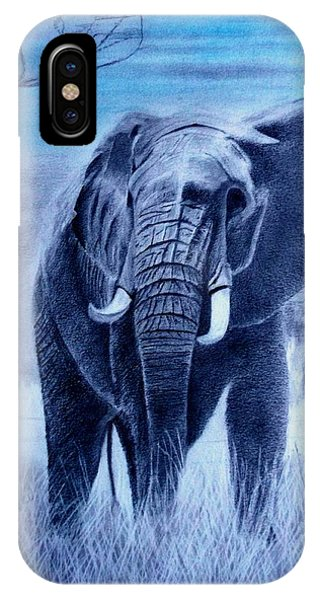 Elephant And Blue Sky IPhone Case