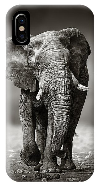 Bass iPhone Case - Elephant Approach From The Front by Johan Swanepoel