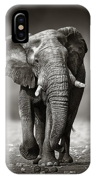 Monochrome iPhone Case - Elephant Approach From The Front by Johan Swanepoel