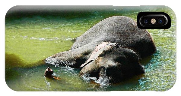 Elephant Bath Phone Case by Sanjeewa Marasinghe
