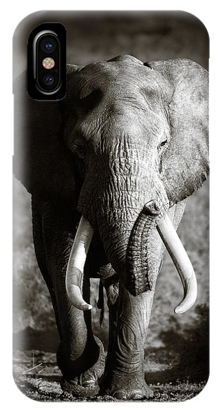 Walk iPhone Case - Elephant Bull by Johan Swanepoel