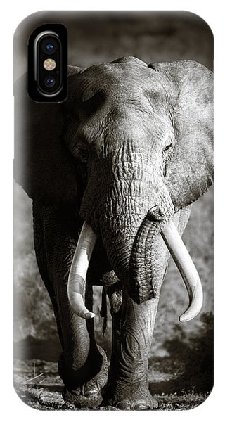 Monochrome iPhone Case - Elephant Bull by Johan Swanepoel