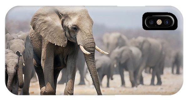 March iPhone Case - Elephant Feet by Johan Swanepoel