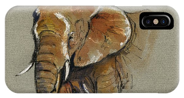 Drawing iPhone Case - Elephant Head African by Juan  Bosco