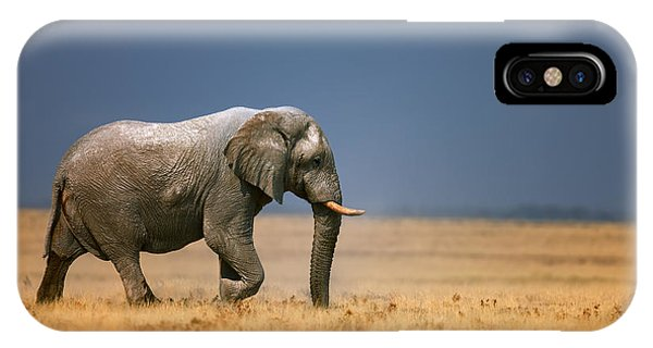 Open iPhone Case - Elephant In Grassfield by Johan Swanepoel