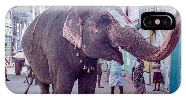 Elephant In The Street In India IPhone Case