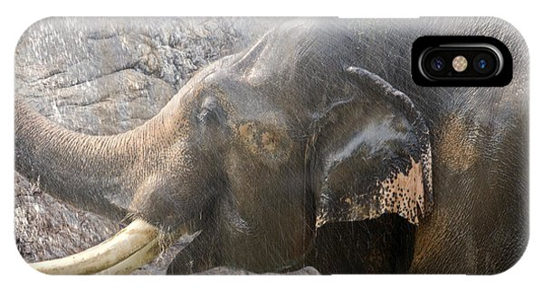 Elephant Shower IPhone Case