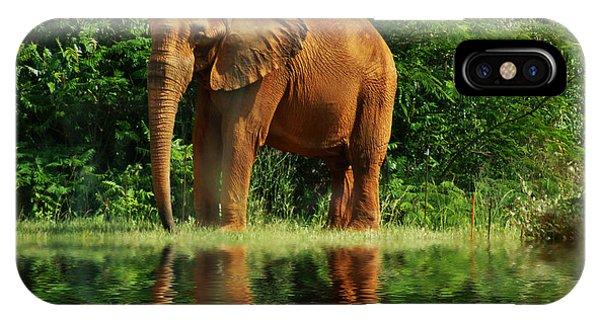 Elephant The Giant IPhone Case