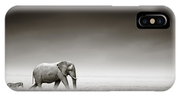 Walk iPhone Case - Elephant With Zebra by Johan Swanepoel