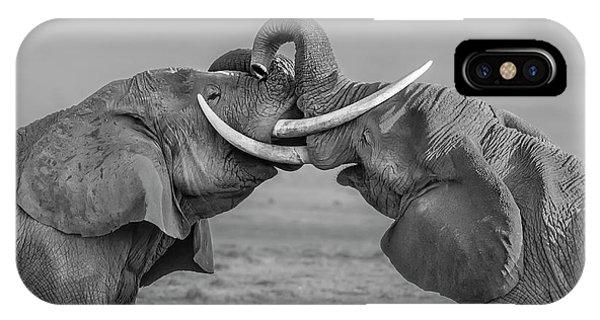 Struggle iPhone Case - Elephants Fighting by Yun Wang