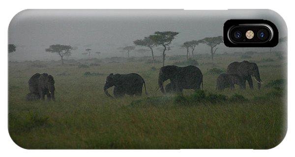 Elephants In Heavy Rain IPhone Case