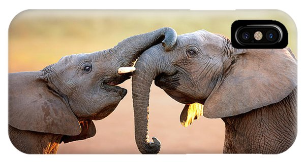 Africa iPhone X Case - Elephants Touching Each Other by Johan Swanepoel