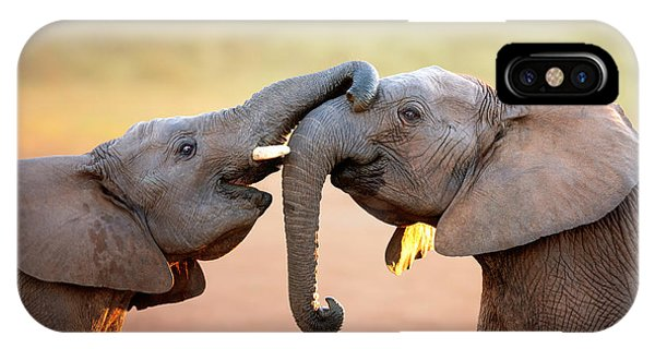 Safari iPhone Case - Elephants Touching Each Other by Johan Swanepoel