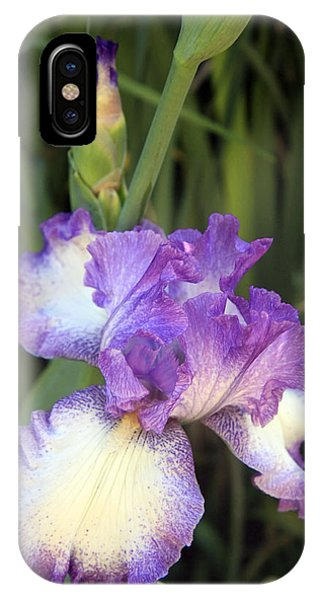 Elfreada's Iris IPhone Case