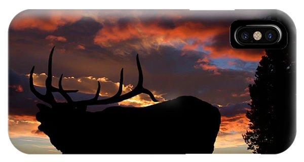Elk At Sunset IPhone Case