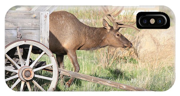 Elk Drawn Carriage IPhone Case