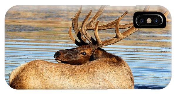 Elk Velveteen  IPhone Case