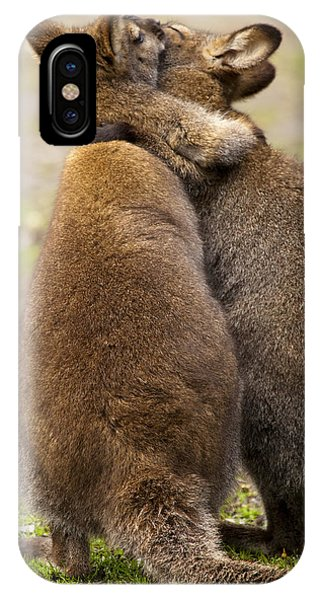 Kangaroo iPhone Case - Embrace by Mike  Dawson