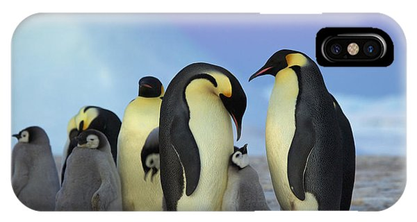 Emperor Penguin Parents And Chick IPhone Case