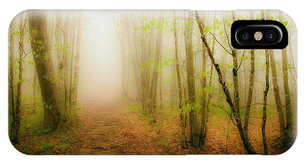 Enchanted Forests Of The Blue Ridge II IPhone Case