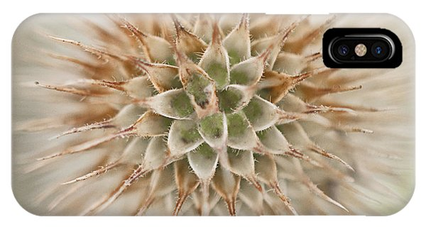 Enchanted Thistle IPhone Case