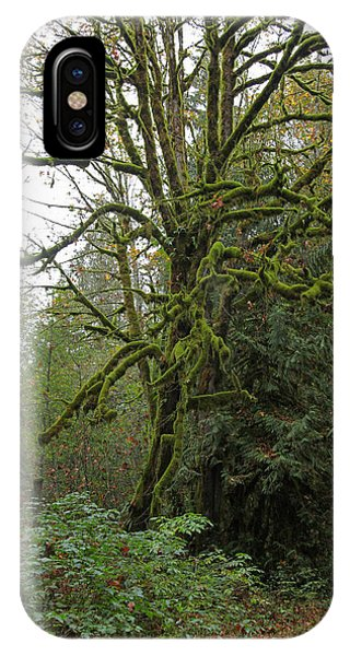 Enchanted Tree IPhone Case