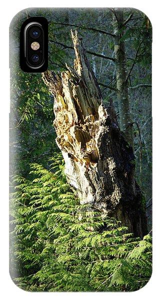 Enchanted Woods IPhone Case