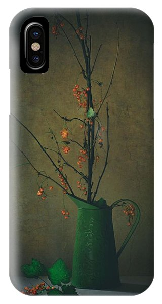 Twig iPhone Case - End Of Summer by Delphine Devos