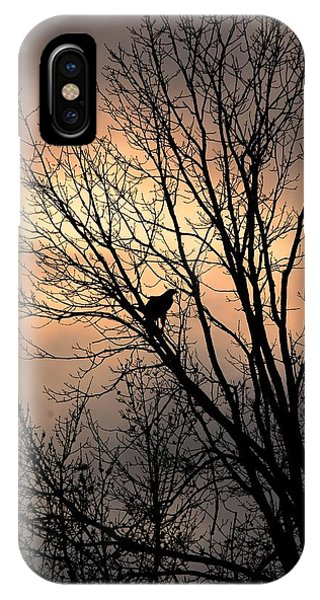 End Of The Day  Red Tailed Hawk IPhone Case